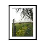Mustard Fence Tree Morning Fog Framed Print