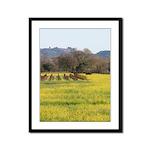 Mustard Field Vineyard Trees Winter Photograph
