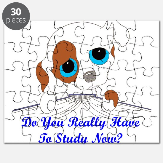 Do You Really Have To Study N Puzzle