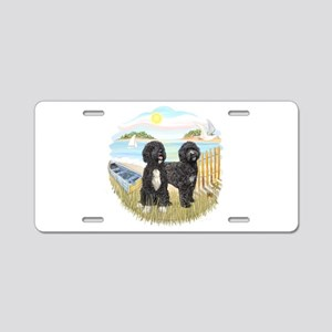 Row Boat-2 PWDs Aluminum License Plate