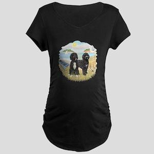 Row Boat-2 PWDs Maternity Dark T-Shirt