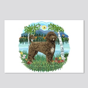 Birches - PWD(brn) Postcards (Package of 8)