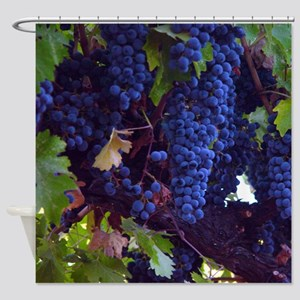 Ripe Natural Grapes- Shower Curtain