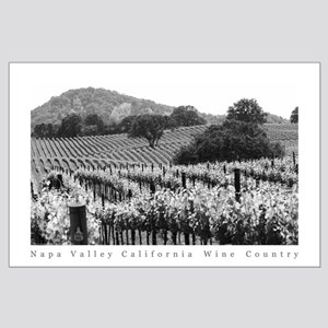 Napa Valley Vineyard Black + White Poster