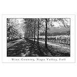 black + white napa vineyard fall large posters