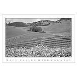 black + white mustard vineyard foothills lg poster