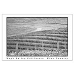 black + white vineyard on hill large posters