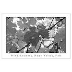 black + white napa valley vine leaves lg poster