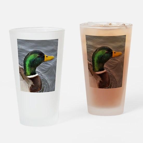 Male Mallard Drinking Glass