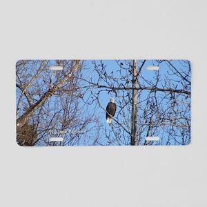 Bald Eagle #02 Aluminum License Plate