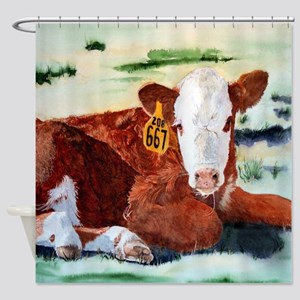 Hereford Calf Shower Curtain