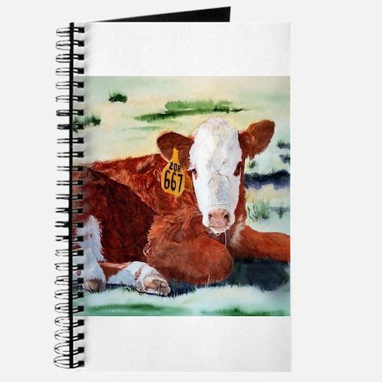 Hereford Calf Journal