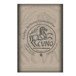 Celtic Horse Coin Postcards (Package of 8)