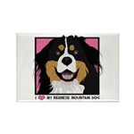 I Love My Bernese Rectangle Magnet (10 pack)