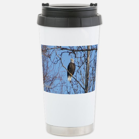 Bald Eagle #02 Stainless Steel Travel Mug