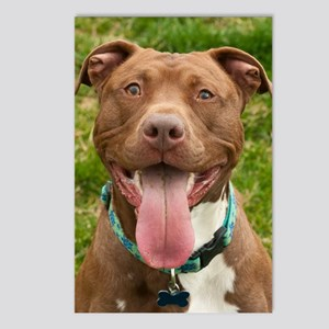 Pit Bull 13 Postcards (Package of 8)