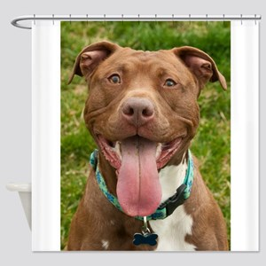 Pit Bull 13 Shower Curtain