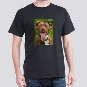 Pit Bull 13 Dark T-Shirt