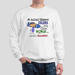 Colors Own World Autism Sweatshirt
