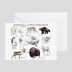 Animals of the Polar Regions Greeting Card