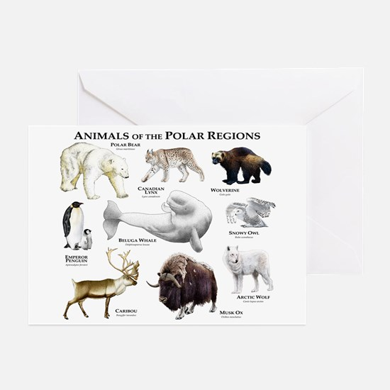 Animals of the Polar Regions Greeting Cards (Pk of