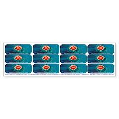Angelic Feng Shui Logo Covers Bumper Bumper Sticker