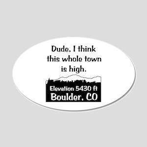Boulder High Town 22x14 Oval Wall Peel