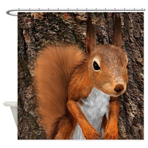 Red Squirrel Shower Curtains