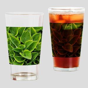 Lush green hosta leaves Drinking Glass