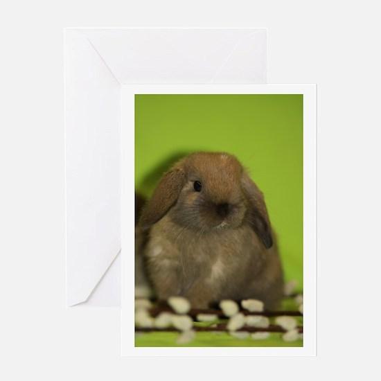 """Bunny 9"" Greeting Card"