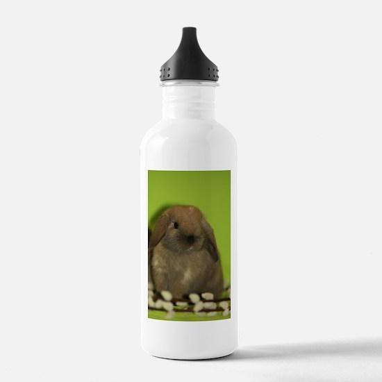 """""""Bunny 9"""" Water Bottle"""