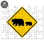 Bear Migration CA Puzzle