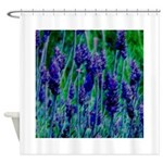 Sonoma Lavendar Shower Curtain