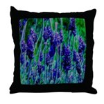 Sonoma Lavendar Throw Pillow