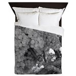 Grapes As Art Wine Country Queen Duvet Covers Quee