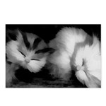 shhh...they're sleeping Postcards (Package of 8)