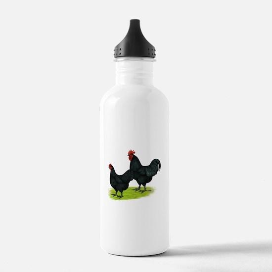 Australorp Chickens Water Bottle
