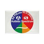 Autistic Symbol Rectangle Magnet (100 pack)