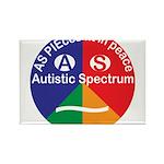 Autistic Symbol Rectangle Magnet