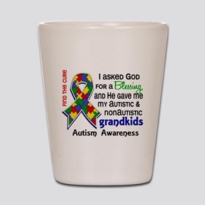 Blessing 4 Autism Shot Glass
