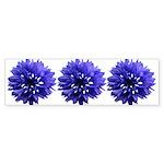 Cornflower Sticker (Bumper)