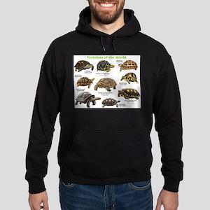 Tortoises of the World Hoodie (dark)
