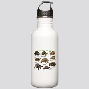 Tortoises of the World Stainless Water Bottle 1.0L
