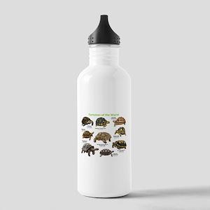 Tortoises of the World Stainless Water Bottle 1.0L