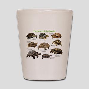 Tortoises of the World Shot Glass