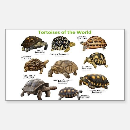 Tortoises of the World Sticker (Rectangle)