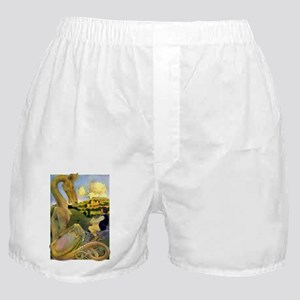 DRAGON TALES Boxer Shorts