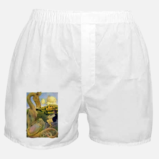 DRAGON TALES Boxer Shorts