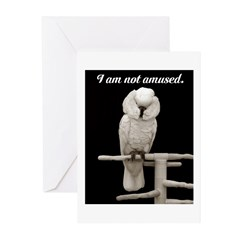 I am not amused. Greeting Cards (Pk of 20)