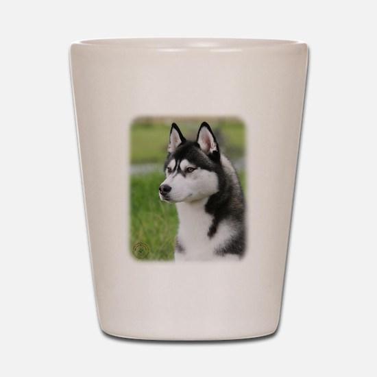 Siberian Husky 9Y570D-006 Shot Glass
